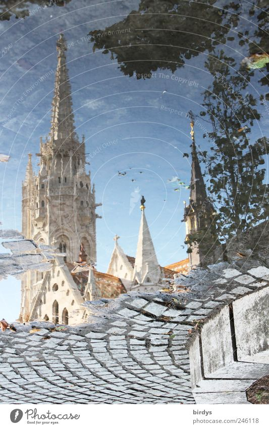 Matthiaskirche Budapest Ungarn Tourismus Sightseeing Städtereise Kirche Kirchturm Sehenswürdigkeit außergewöhnlich Glaube Religion & Glaube Surrealismus