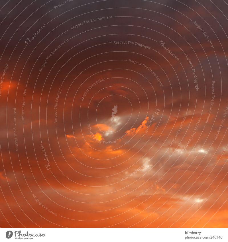 himmel oder hölle? Himmel Natur Sommer Wolken gelb Umwelt dunkel Stil Stimmung Kunst Wetter gold Klima Design außergewöhnlich bedrohlich