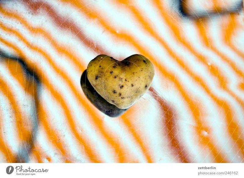 Kartoffel aus Herz Pflanze Liebe Gefühle Garten Freundschaft Zusammensein Frucht Ernährung Lebensmittel Streifen Romantik Zeichen Verliebtheit Bioprodukte