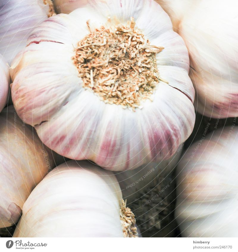 knoblauchcase Gesundheit Lebensmittel Ernährung Lifestyle Kochen & Garen & Backen Gemüse Gastronomie Kräuter & Gewürze lecker Bioprodukte Festessen Salat Salatbeilage Büffet Vegetarische Ernährung Suppe
