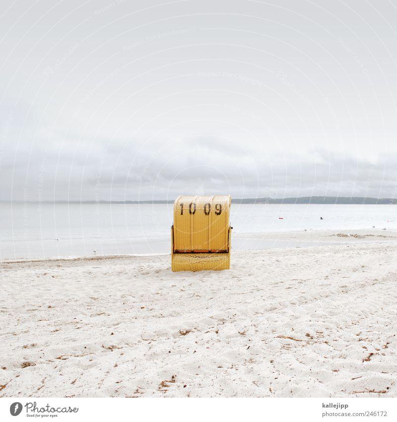 sonnenanbeter Himmel Natur Wasser Sommer Strand Meer Ferien & Urlaub & Reisen ruhig Erholung Landschaft Umwelt Sand Küste Tourismus Freizeit & Hobby Lifestyle
