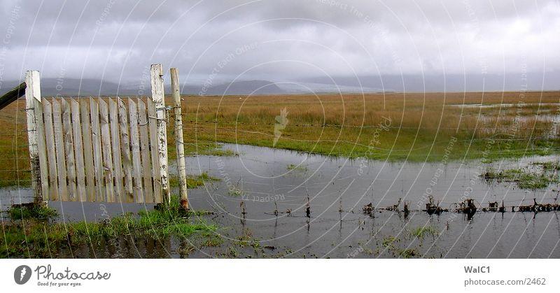 Südisland Wasser grün Wolken Wiese Landschaft Europa Zaun Island schlechtes Wetter Stacheldraht