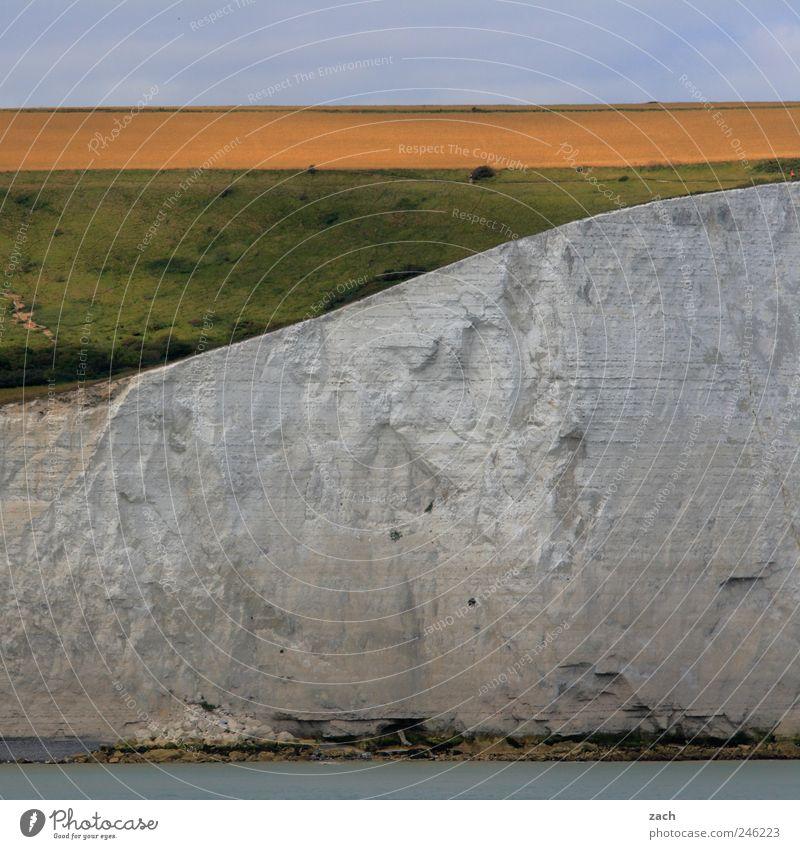 Dover Natur Landschaft Wasser Pflanze Gras Hügel Felsen Küste Nordsee Meer Ärmelkanal White Cliffs Klippe Kreidefelsen Sehenswürdigkeit Stein Sand weiß Farbfoto