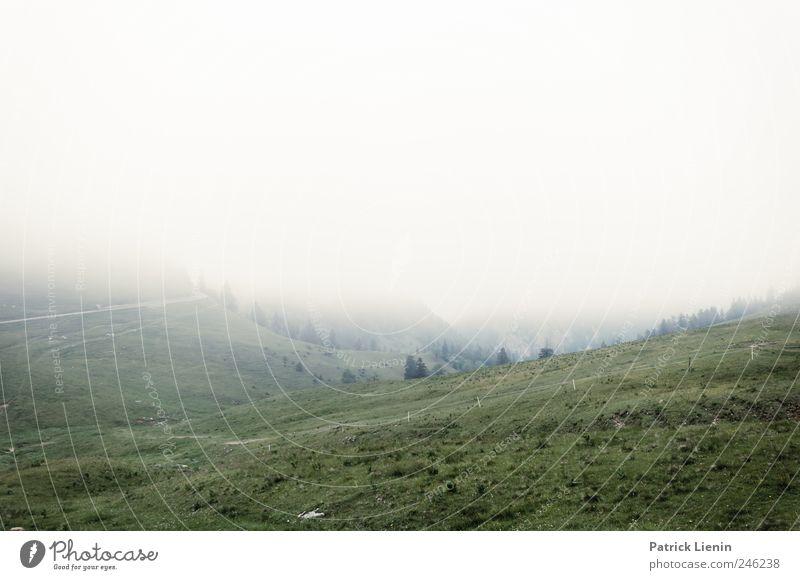 Sommer 2011 Natur Ferien & Urlaub & Reisen Wolken ruhig Ferne Wald Erholung Wiese Freiheit Berge u. Gebirge Landschaft Umwelt grau Wetter Zufriedenheit