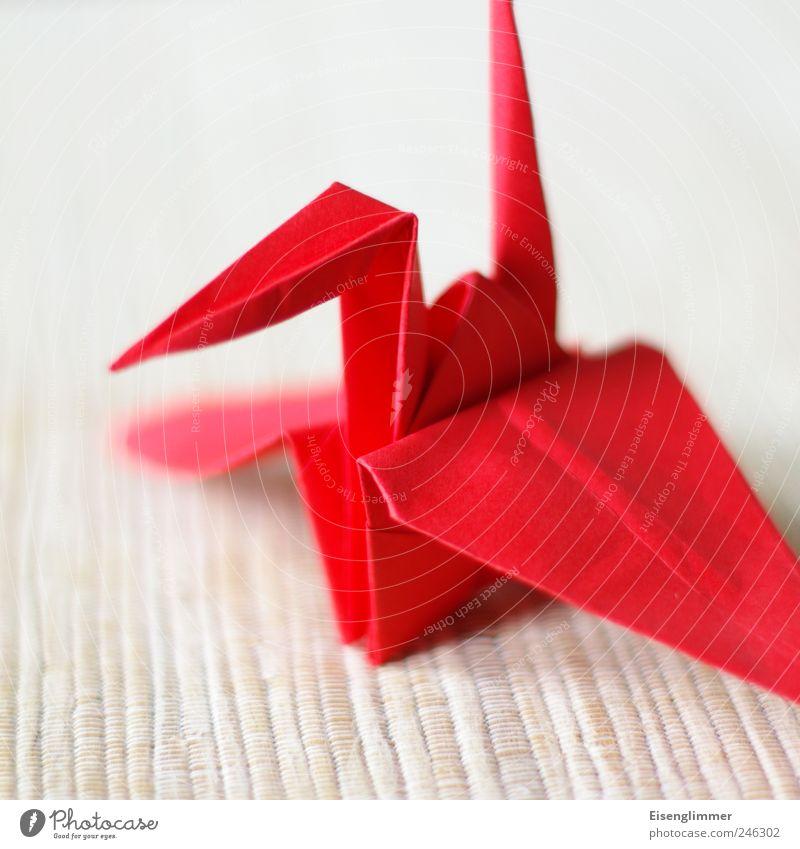 Kranich rot Tier hell Vogel Papier ästhetisch Falte Tragfläche Japan Schnabel Basteln eckig Kranich Kunsthandwerk Japanisch Origami