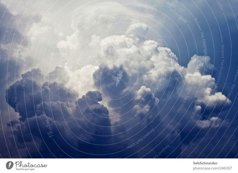 Cumulus Umwelt Natur Urelemente Himmel nur Himmel Wolken Gewitterwolken Sommer Wetter schlechtes Wetter Unwetter Wind Regen außergewöhnlich nass blau weiß