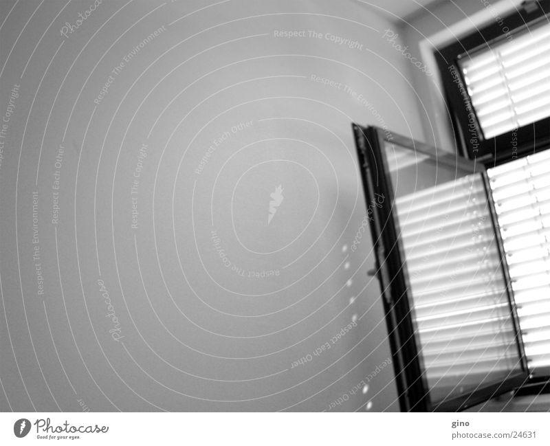 das fenster Fenster Spiegel Licht Wand Häusliches Leben window light
