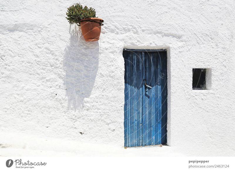 Santorin, Griechenland Ferien & Urlaub & Reisen Tourismus Sightseeing Sommer Häusliches Leben Wohnung Haus Tür Pflanze Hauptstadt Hafenstadt Mauer Wand Fenster