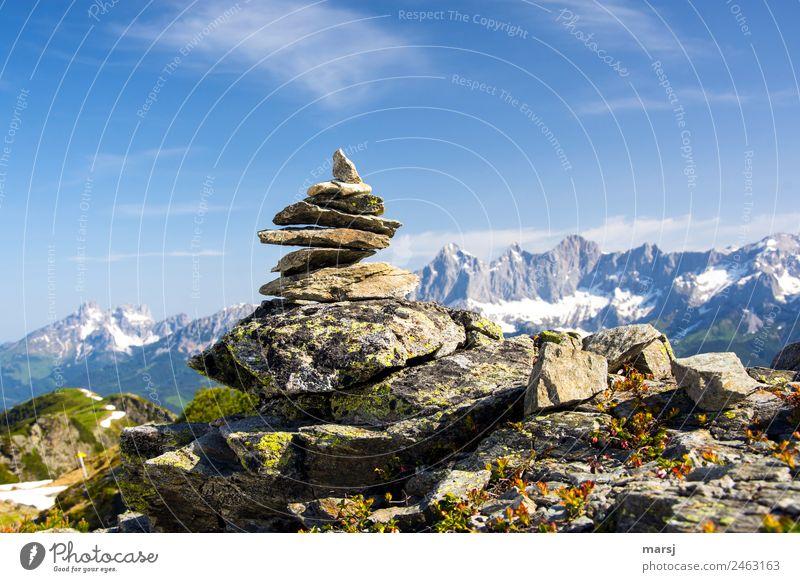 Mein eigener Gipfel Ferien & Urlaub & Reisen Tourismus Ausflug Freiheit Berge u. Gebirge wandern Natur Felsen Alpen Dachstein Bischofsmütze Stein Zeichen