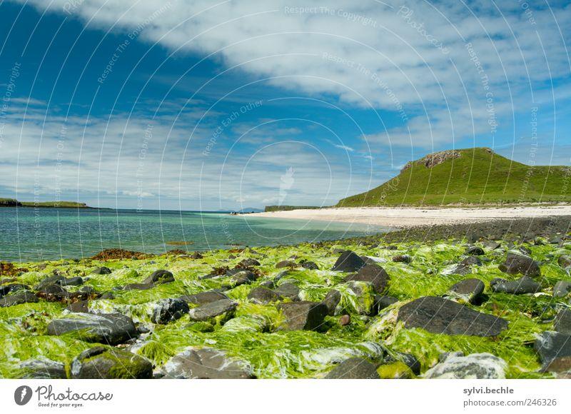 Schottland III Umwelt Natur Landschaft Sand Wasser Himmel Wolken Sommer Klima Schönes Wetter Pflanze Hügel Berge u. Gebirge Küste Strand Bucht Meer blau grün