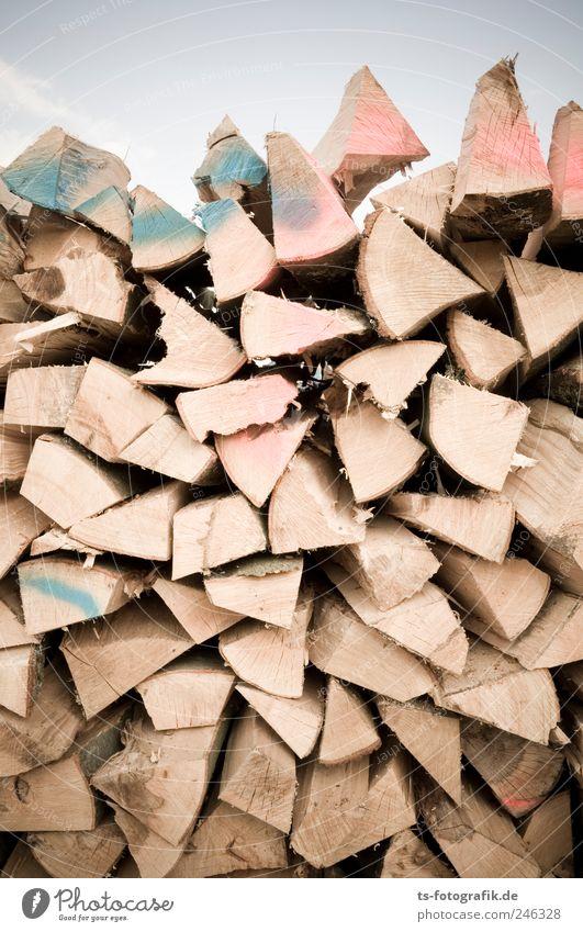 Spalter! Landwirtschaft Forstwirtschaft Energiewirtschaft Umwelt Baum Holz Graffiti braun Brennholz Scheiterhaufen gefallen Ofenholz aufschichten Brennstoff