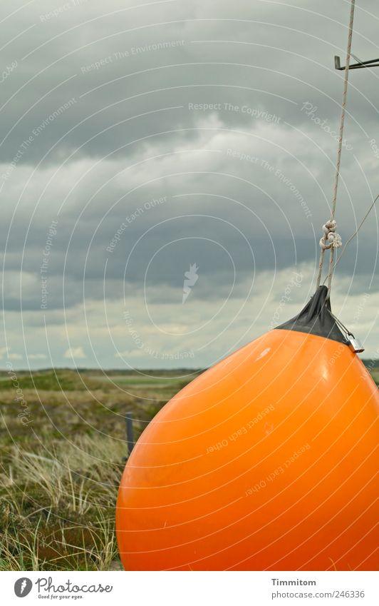 Zeichen + Symbole: Das orangefarbene Trumm Natur Sommer Ferien & Urlaub & Reisen Wolken Leben Gefühle Landschaft Umwelt Gras Ausflug verrückt ästhetisch