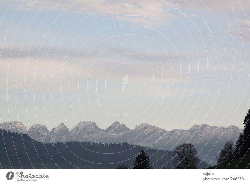 himmlische aussichten Umwelt Natur Landschaft Pflanze Himmel Alpen Berge u. Gebirge Churfirsten Schneebedeckte Gipfel ästhetisch Zufriedenheit zart Farbfoto