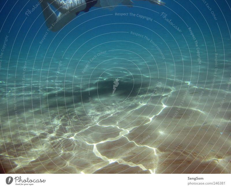 Meeresboden Mensch blau Wasser Ferien & Urlaub & Reisen Meer Sommer ruhig schwarz gelb Bewegung Sand braun Schwimmen & Baden Freizeit & Hobby Fisch beobachten