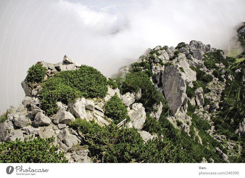 Gratwanderung Himmel Natur Ferien & Urlaub & Reisen Pflanze grün weiß Landschaft Wolken Berge u. Gebirge Umwelt Freiheit Felsen Tourismus Wetter Luft Erde