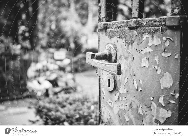 vergangen Natur Berlin-Friedenau Park Tür Tor Griff Metall Rost alt dreckig gruselig Ende Vergänglichkeit verfallen Friedhof Schwarzweißfoto Außenaufnahme
