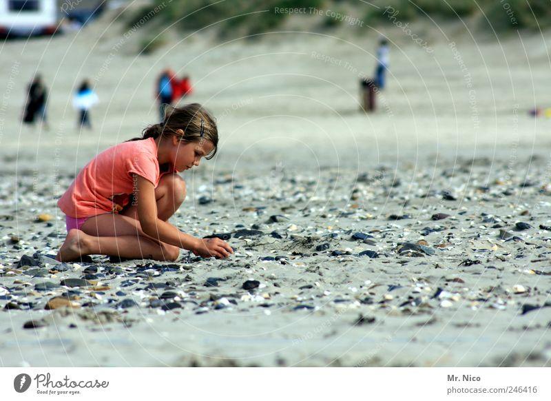 entdecke deine welt Sommer Sommerurlaub Meer Mädchen Umwelt Natur Sand Klima Wetter Küste Nordsee Insel berühren knien Strandgut Muschel Suche finden Sammler