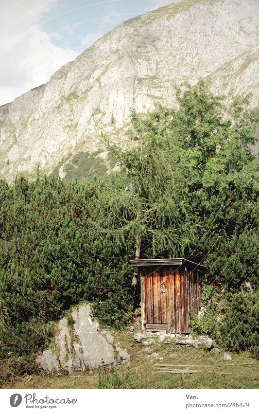 stilles Örtchen Erholung ruhig Ferien & Urlaub & Reisen Ausflug Berge u. Gebirge wandern Natur Landschaft Pflanze Schönes Wetter Baum Gras Sträucher Felsen