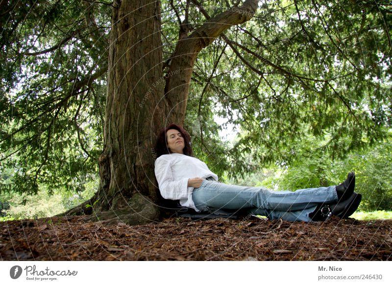 päusken Frau Erwachsene Beine Umwelt Natur Erde Pflanze Baum Park Wald Hemd Jeanshose Stiefel langhaarig Erholung genießen liegen träumen Schutz Geborgenheit