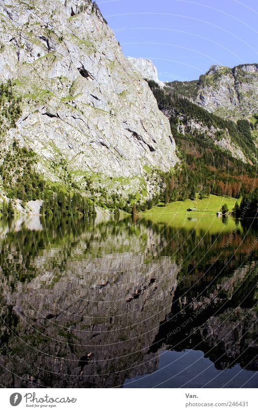 Spieglein, Spieglein... Erholung ruhig Ausflug Freiheit Sommer Berge u. Gebirge wandern Natur Landschaft Pflanze Wolkenloser Himmel Baum Sträucher Wiese Felsen