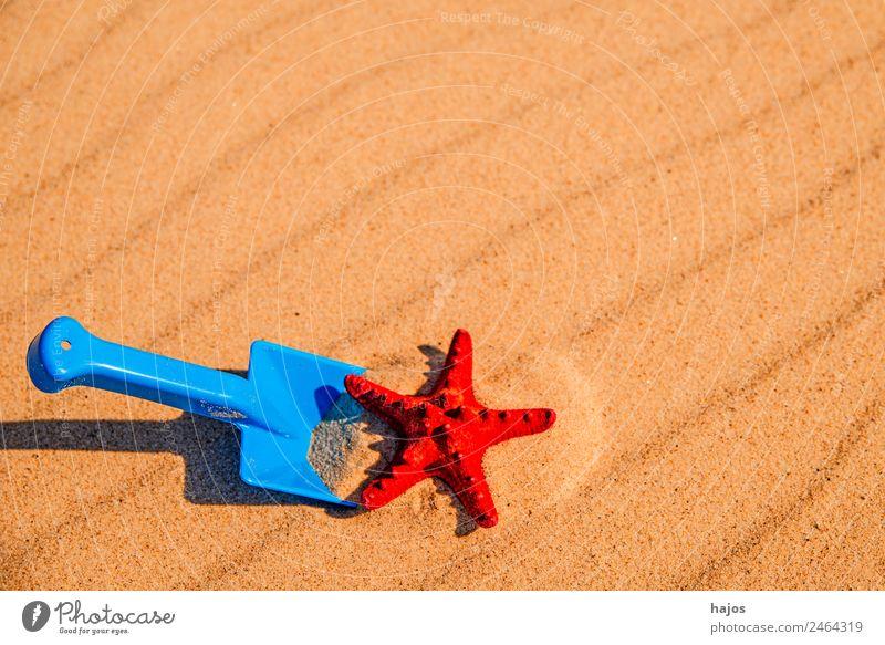Sandstrand mit Spiezeugschaufel und Seestern Freude Erholung Ferien & Urlaub & Reisen Sommer Strand Kind Ostsee Meer gelb Tourismus Schaufel blau Spielzeug
