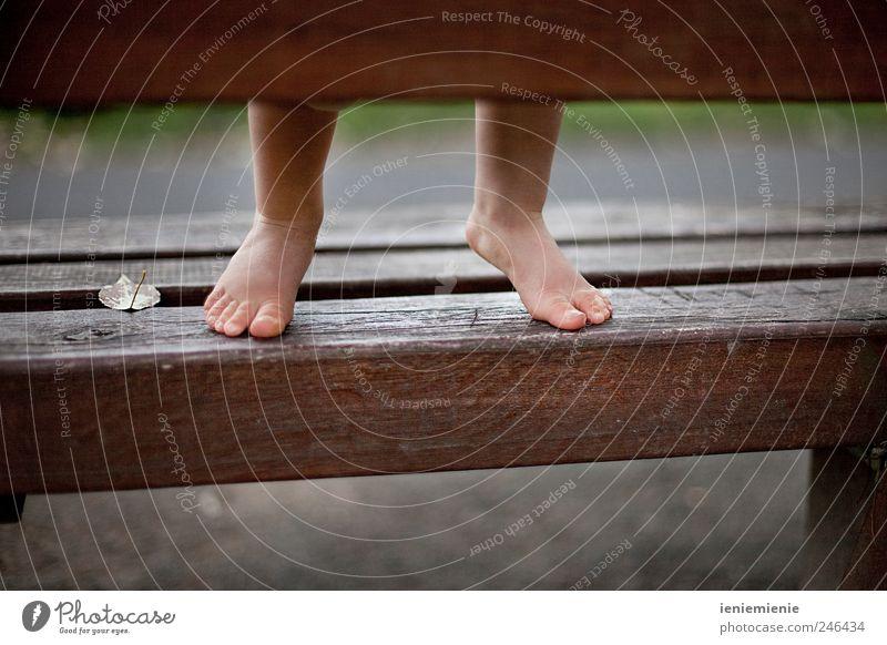 Tip Toe Mensch Blatt Leben Spielen Holz klein Glück Beine Fuß Park Kindheit Baby natürlich hoch Fröhlichkeit Wachstum