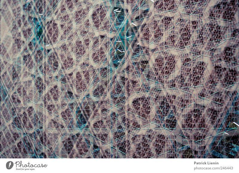 back from space Haus Wand Architektur Gebäude Kunst Kraft Design modern ästhetisch Perspektive Wandel & Veränderung einzigartig Bauwerk Kreativität Tor
