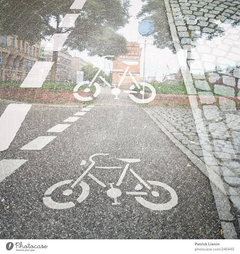 lets write the streets Straße Wege & Pfade hell Freizeit & Hobby Fahrrad Ausflug Verkehr Perspektive Streifen fahren Bürgersteig Fußweg Rad Verkehrswege