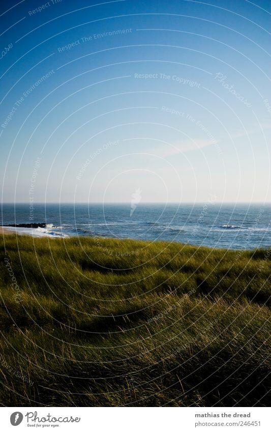 DÄNEMARK - XVI Umwelt Natur Landschaft Wasser Himmel Wolken Horizont Sommer Schönes Wetter Wind Pflanze Gras Moos Wildpflanze Wiese Wellen Küste Strand Meer