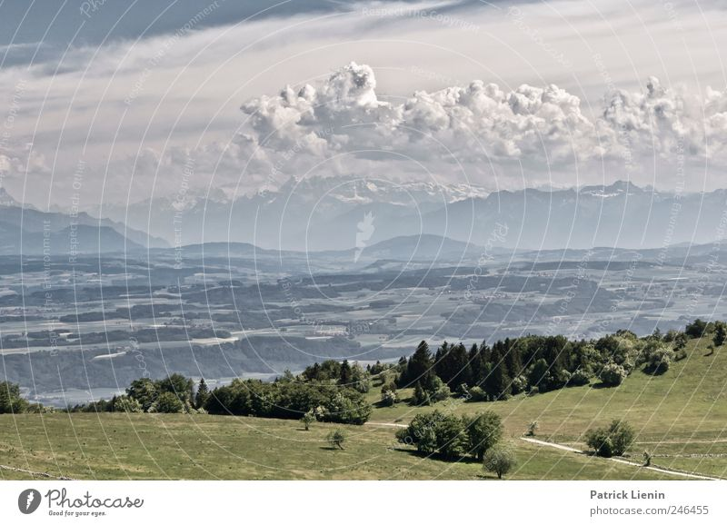 Grüss mir die Schweiz Ferien & Urlaub & Reisen Tourismus Ausflug Ferne Freiheit Sightseeing Expedition Sommer Berge u. Gebirge wandern Umwelt Natur Landschaft