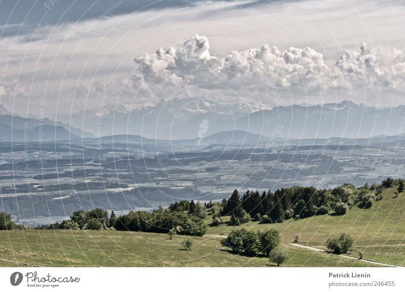 Grüss mir die Schweiz Himmel Natur Ferien & Urlaub & Reisen Sommer Landschaft Wolken Ferne Wald Umwelt Berge u. Gebirge Wiese Freiheit Wetter Tourismus wandern