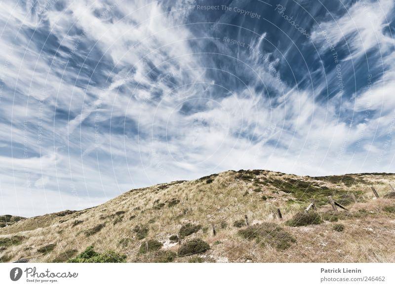 Silently Himmel Natur blau schön Pflanze Sommer Ferien & Urlaub & Reisen Meer Wolken Ferne Freiheit Umwelt Landschaft Luft Wetter Wellen