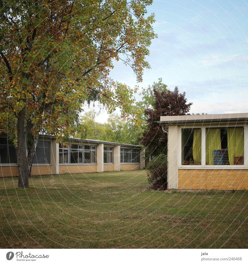 schule Natur Himmel Pflanze Baum Gras Sträucher Grünpflanze Wiese Haus Bauwerk Gebäude Mauer Wand Fenster Farbfoto Außenaufnahme Menschenleer Tag