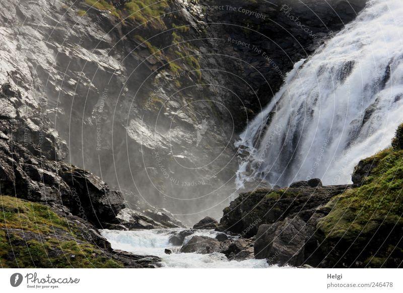 Naturgewalten Natur Wasser weiß Pflanze Sommer Ferien & Urlaub & Reisen Berge u. Gebirge Bewegung Landschaft grau Umwelt Stein nass Felsen Tourismus Geschwindigkeit