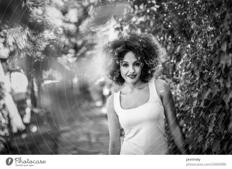 Junge schwarze Frau mit Afro-Frisur lächelnd Lifestyle Stil Glück schön Haare & Frisuren Gesicht Sommer Mensch feminin Erwachsene Jugendliche 1 18-30 Jahre Park