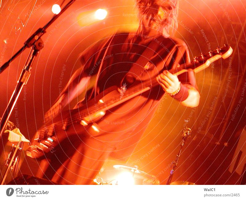 Filter Konzert Bühne Rockmusik Club Gitarre Klang bulldogfest Musik USA