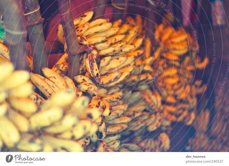 bananas gelb Frucht frisch Ernährung Bioprodukte exotisch Banane Vegetarische Ernährung Lebensmittel Bananenstaude Asiatische Küche