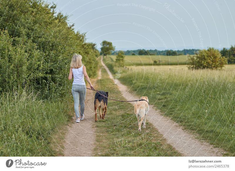 Junge blonde Frau geht mit ihren beiden Hunden spazieren. Lifestyle Glück schön Sommer Erwachsene Freundschaft 1 Mensch Natur Tier Wärme Gras Park Haustier