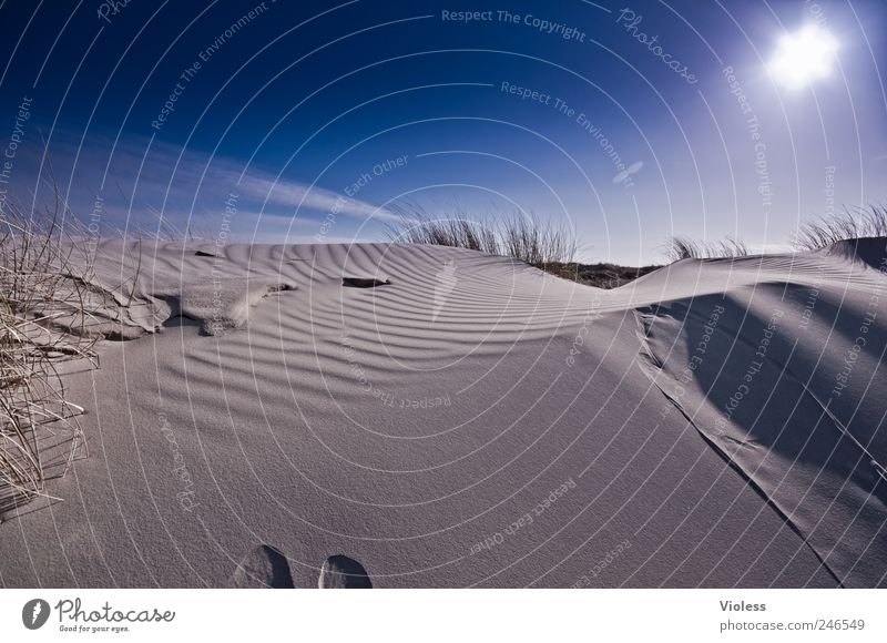 Spiekeroog | ...deep blue Himmel blau Sonne Strand Erholung Landschaft Umwelt Sand Insel Nordsee entdecken Schönes Wetter Spiekeroog