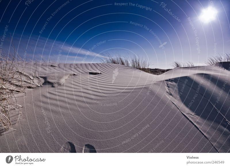 Spiekeroog   ...deep blue Umwelt Landschaft Sand Himmel Sonne Sonnenlicht Schönes Wetter Strand Nordsee entdecken Erholung Insel Düne blau Farbfoto