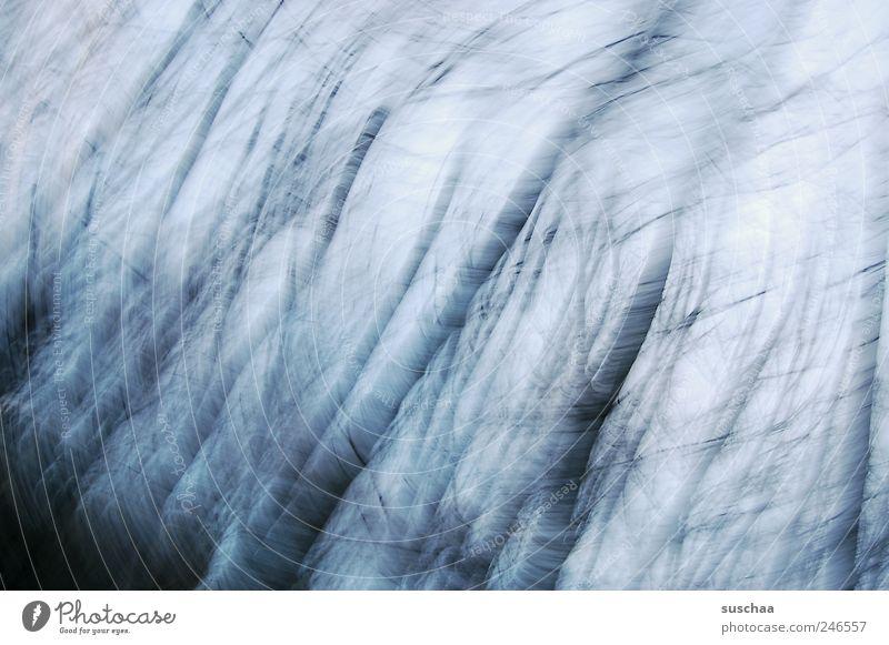 irene is wütend .. Himmel Natur blau Winter Einsamkeit Wald dunkel Umwelt Landschaft Bewegung Stimmung Klima Trauer Urelemente gruselig Sturm
