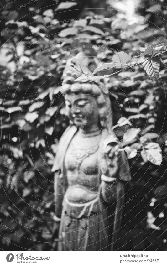 tombeau Natur Blatt Umwelt dunkel Stein Park außergewöhnlich wild Sträucher Skulptur Friedhof Grabstein Grabmal Göttin