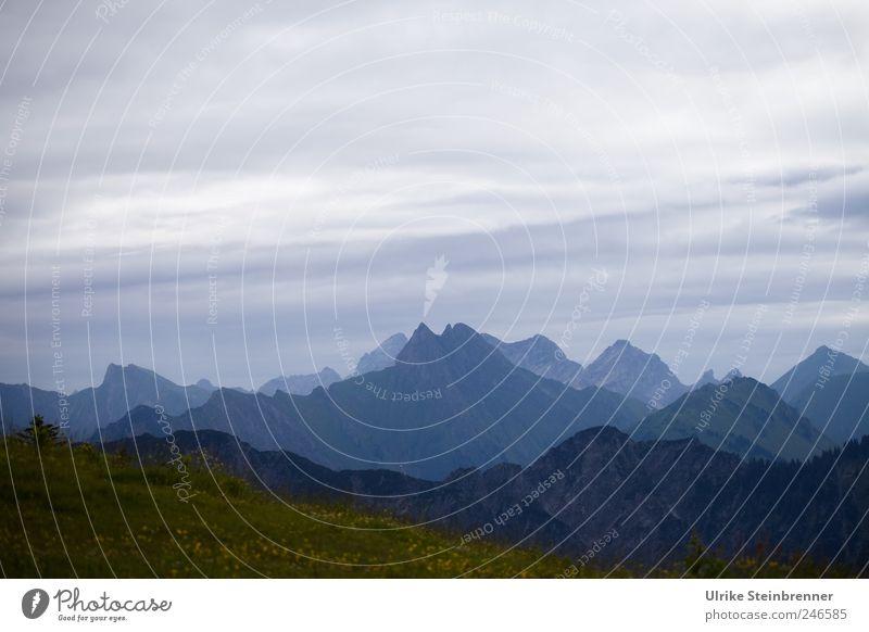 Zickzack Natur Landschaft Himmel Wolken Sommer schlechtes Wetter Gras Hügel Felsen Alpen Berge u. Gebirge Allgäuer Alpen Bayern Fellhorn Gipfel stehen dunkel