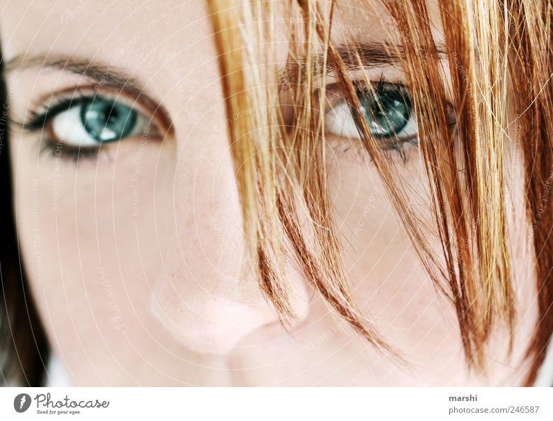 magnetic Frau Mensch blau Gesicht Auge feminin Haare & Frisuren Erwachsene Haut rothaarig Durchblick Haarsträhne intensiv magnetisch