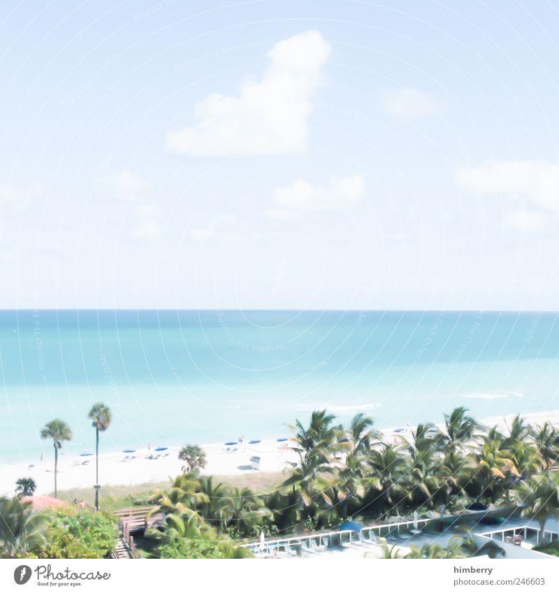 baywatch Natur Baum Pflanze Sommer Ferien & Urlaub & Reisen Strand Meer Ferne Freiheit Umwelt Landschaft Stil Küste Wetter Wellen Tourismus