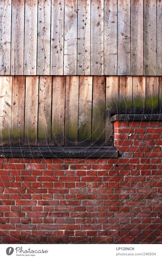 50/50 Lüneburg Kleinstadt Altstadt Mauer Wand Holz Backstein rot Balken Sitzgelegenheit Farbfoto Außenaufnahme Textfreiraum oben Textfreiraum Mitte Tag