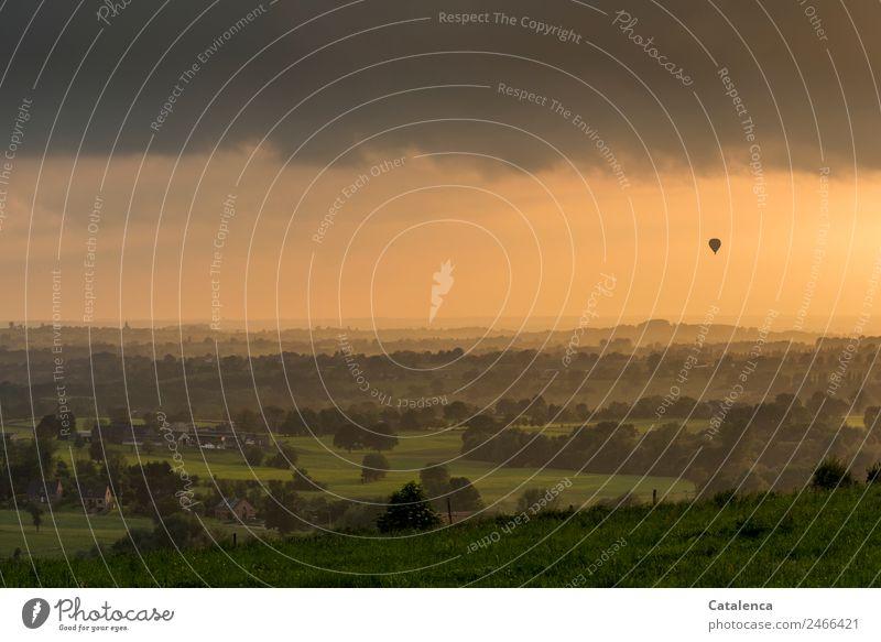 Heiße Luft Ausflug Ballone Umwelt Landschaft Wolkenloser Himmel Horizont Sommer Schönes Wetter Baum Gras Sträucher Wiese Feld Hügel Dorf bevölkert Haus