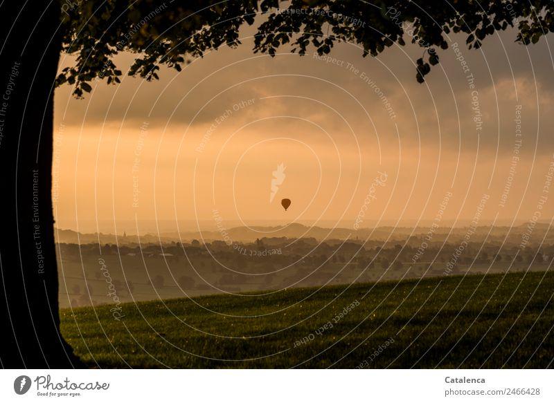 700 X in die Freiheit entlassen Landschaft Pflanze Himmel Wolken Horizont Sonnenaufgang Sonnenuntergang Sommer Schönes Wetter Baum Gras Wiese Hügel Dorf Ballone