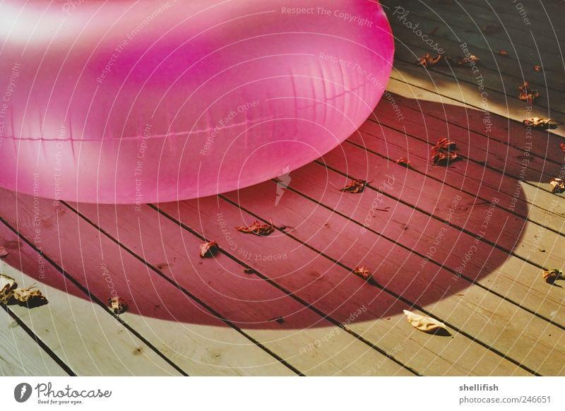 Rosa Luftwurst Luftballon Holz ästhetisch Idylle ruhig rosa Schwimmen & Baden Steg aufblasbar Holzbrett Blatt Sommer Erholung caustics Schattenspiel mehrfarbig
