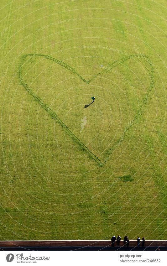 anerkennung nach liebe Valentinstag Muttertag Fußballplatz Mensch maskulin Mann Erwachsene 1 5 Künstler Sommer Gras Wiese Mauer Wand Herz Brunft stehen warten
